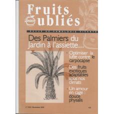 Numéro 28 :  Les palmiers à fruits – Fruits exotiques adaptables