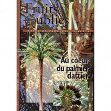 Numéro 48 Au coeur du palmier dattier