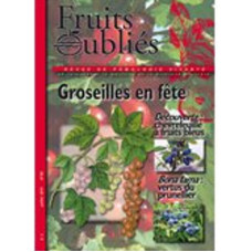Numéro 50 Groseilles – Cerise – Prunellier