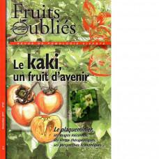 Numéro 53 Le kaki, un fruit d'avenir