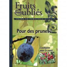 Numéro 64 Pour des prunes - l'aubépine
